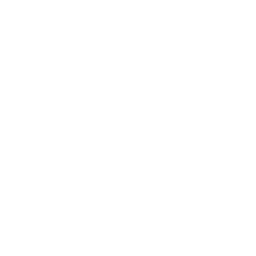 The Great River Rapport